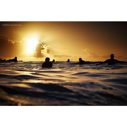 $200 Voucher towards an Aquabumps Golden Light Print