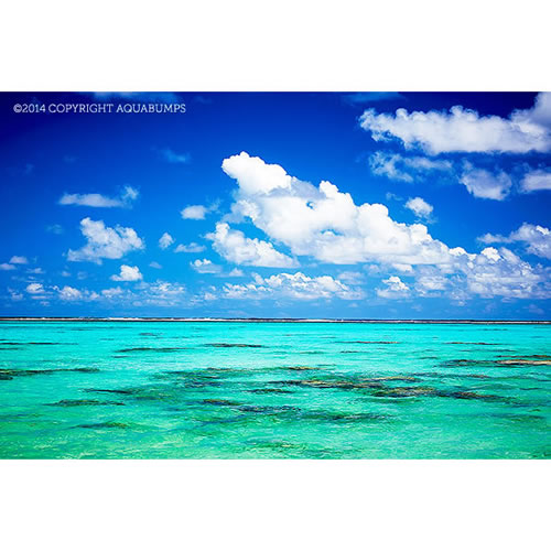 $200 Voucher towards an Aquabumps Idyllic Beaches Print