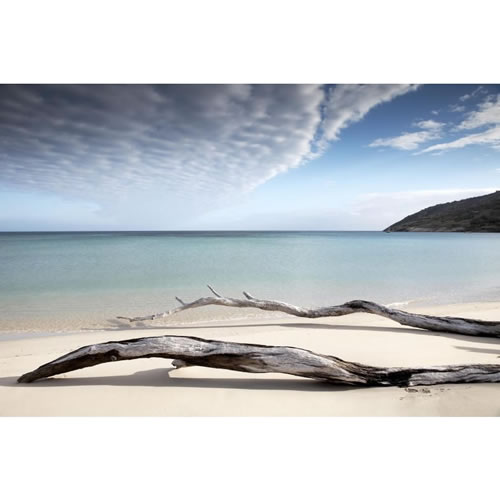 $50 Voucher towards an Aquabumps Idyllic Beaches Print