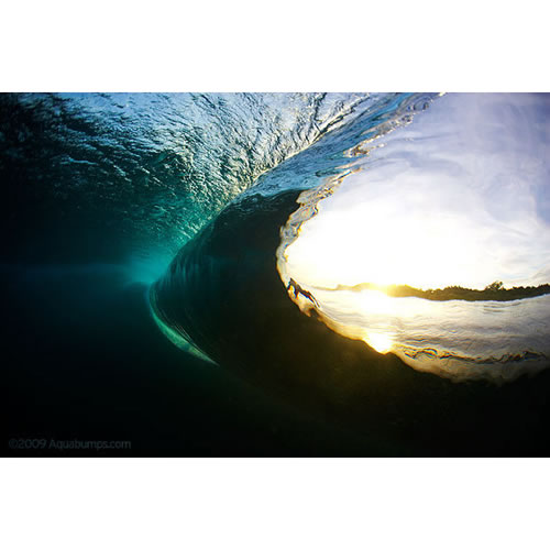$50 Voucher towards an Aquabumps Underwater Wave Print