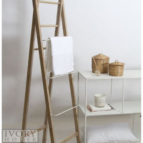 Ladder with Metal Rungs