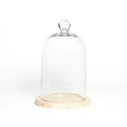 Glass Cloche with Knob and Base 30x16