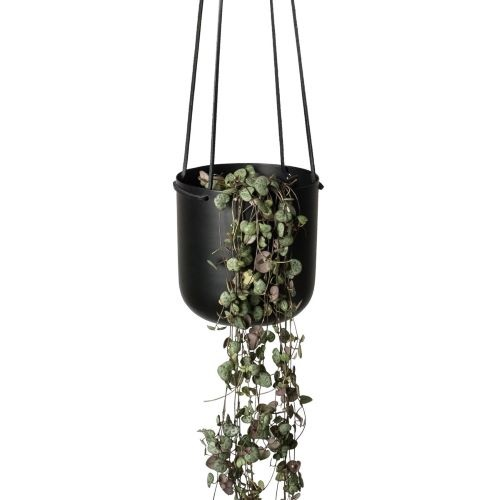 Hanging Planter in Black