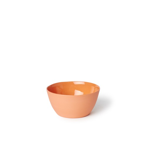 Rice Bowl in Orange