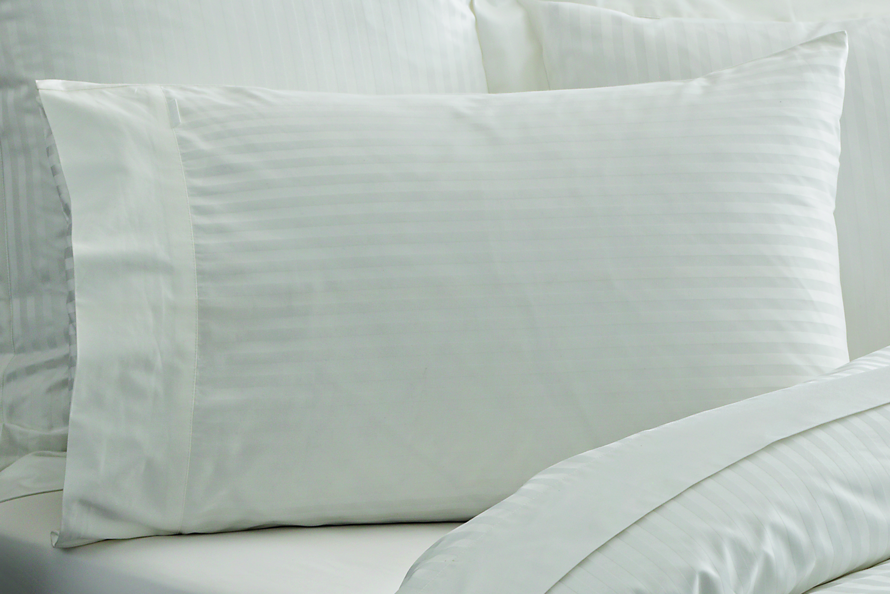 Millennia King Standard Pillowcase - Pair in Snow
