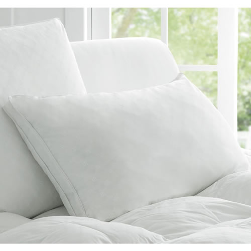 Deluxe Dream Micro Fibre Standard Pillow in Medium 48cm x 73cm