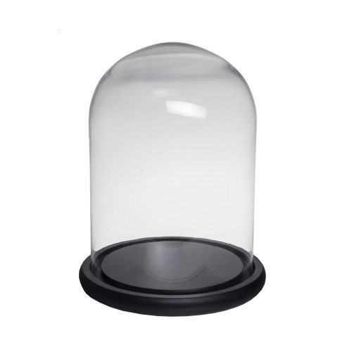 Medium Dome Black Base